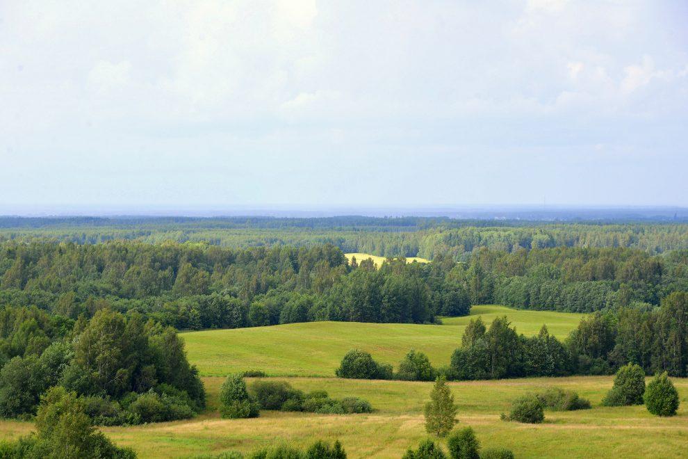 South Estonia